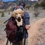 Hunderucksack für grosse Hunde